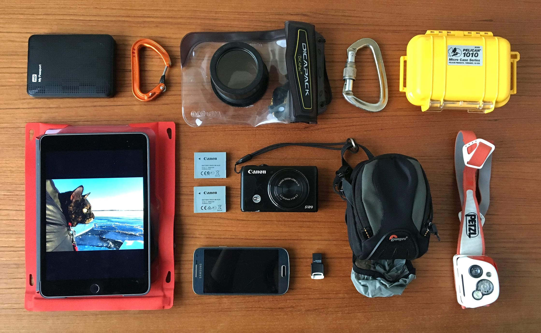 Adrienne Tam's Point and Shoot Gear | Best Travel Camera Guide