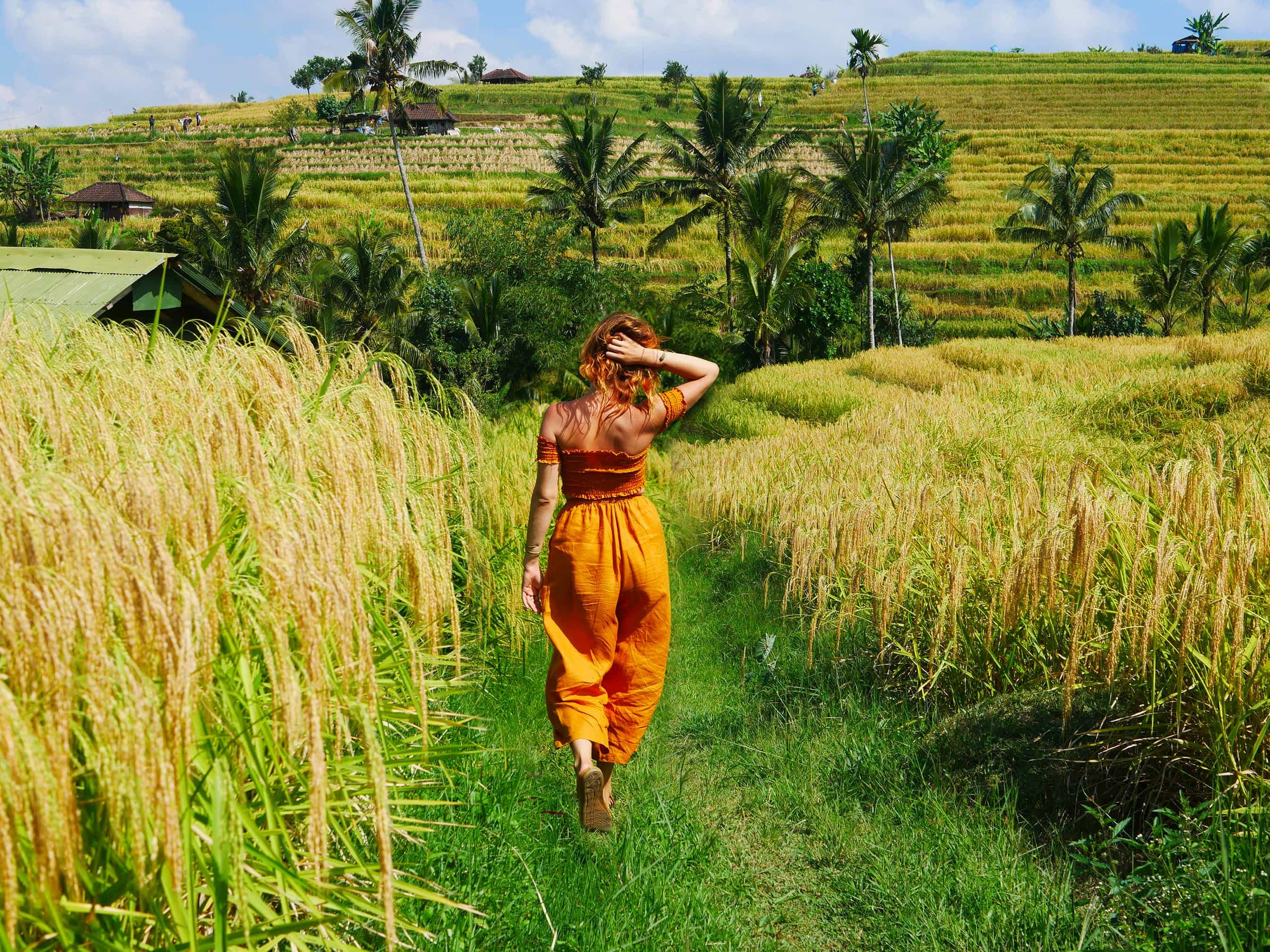 Lauren Ronquillo in Jatiluwih Rice Terraces, Bali Indonesia by Brianna D