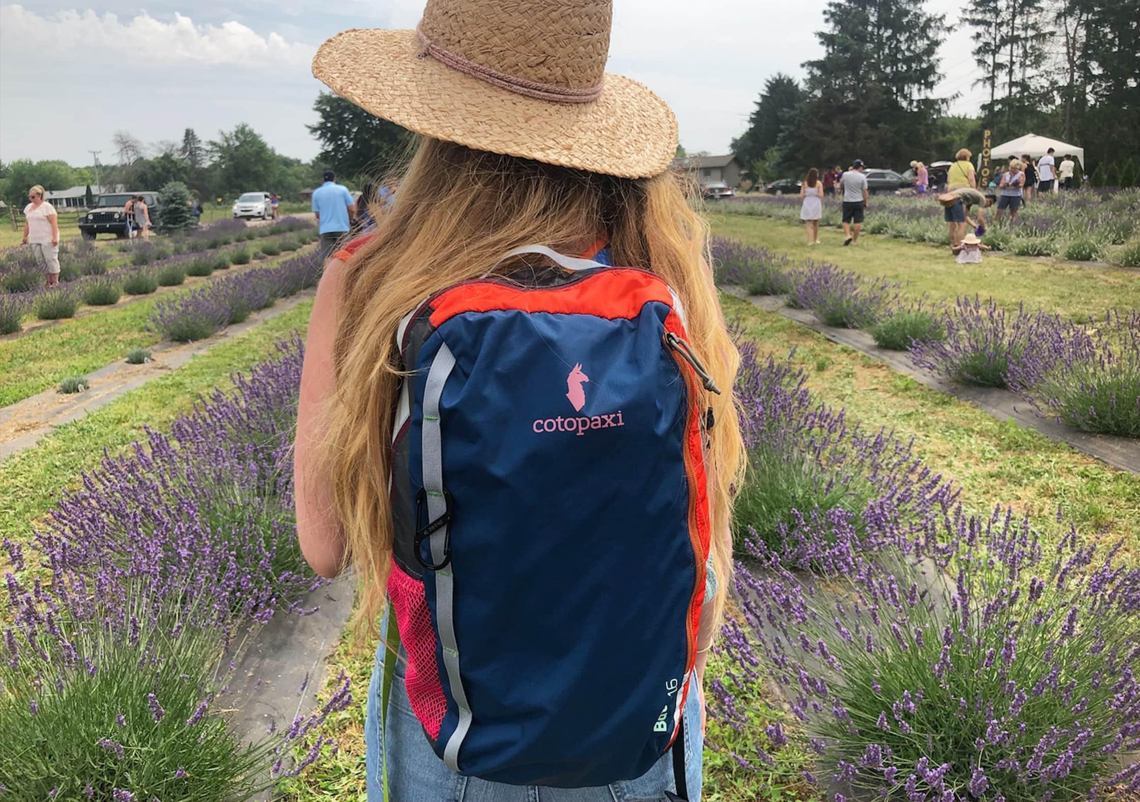 Cotopaxi Batac At Lavender Fields