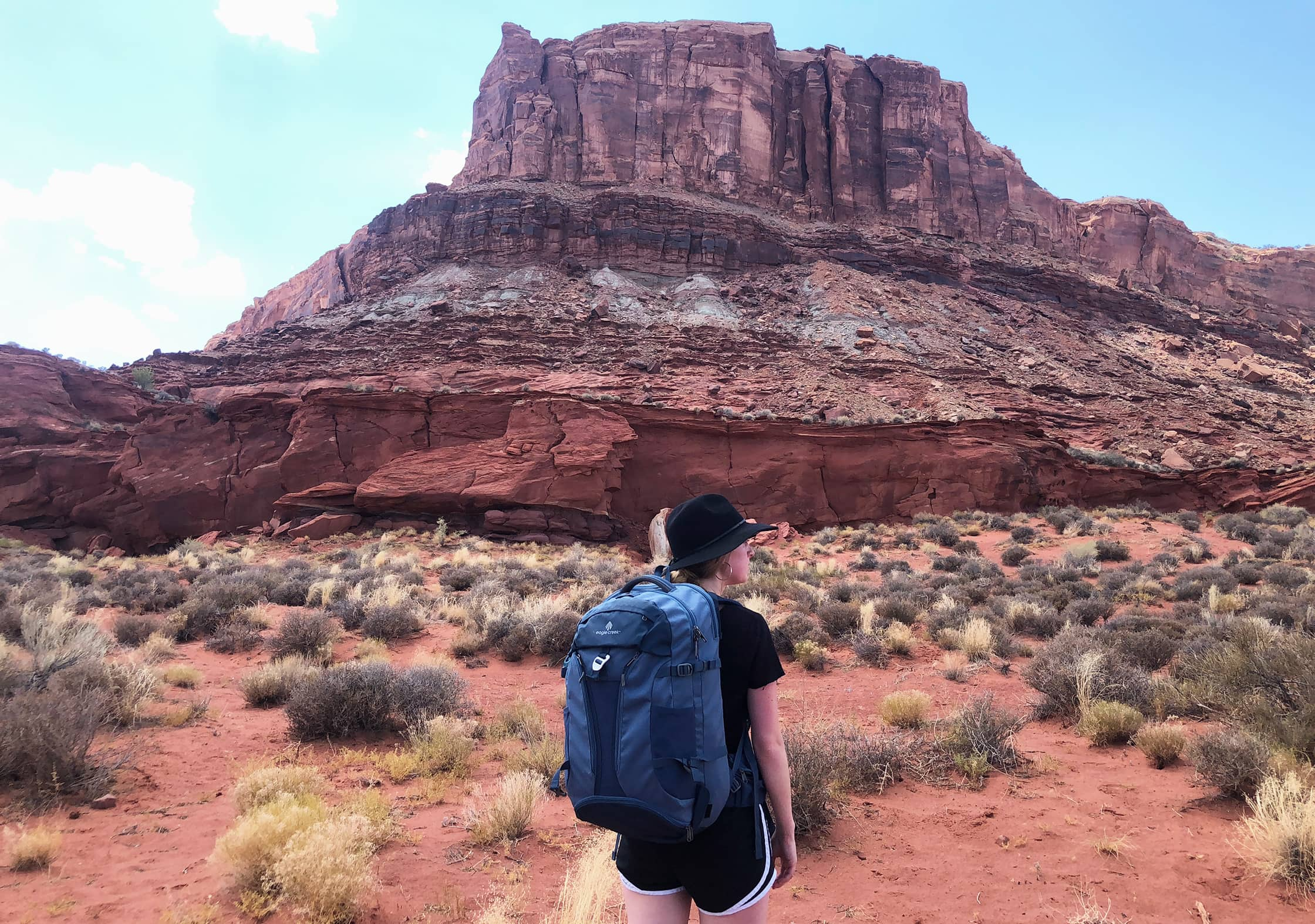 Eagle Creek Global Companion 40L Travel Pack in Moab, Utah