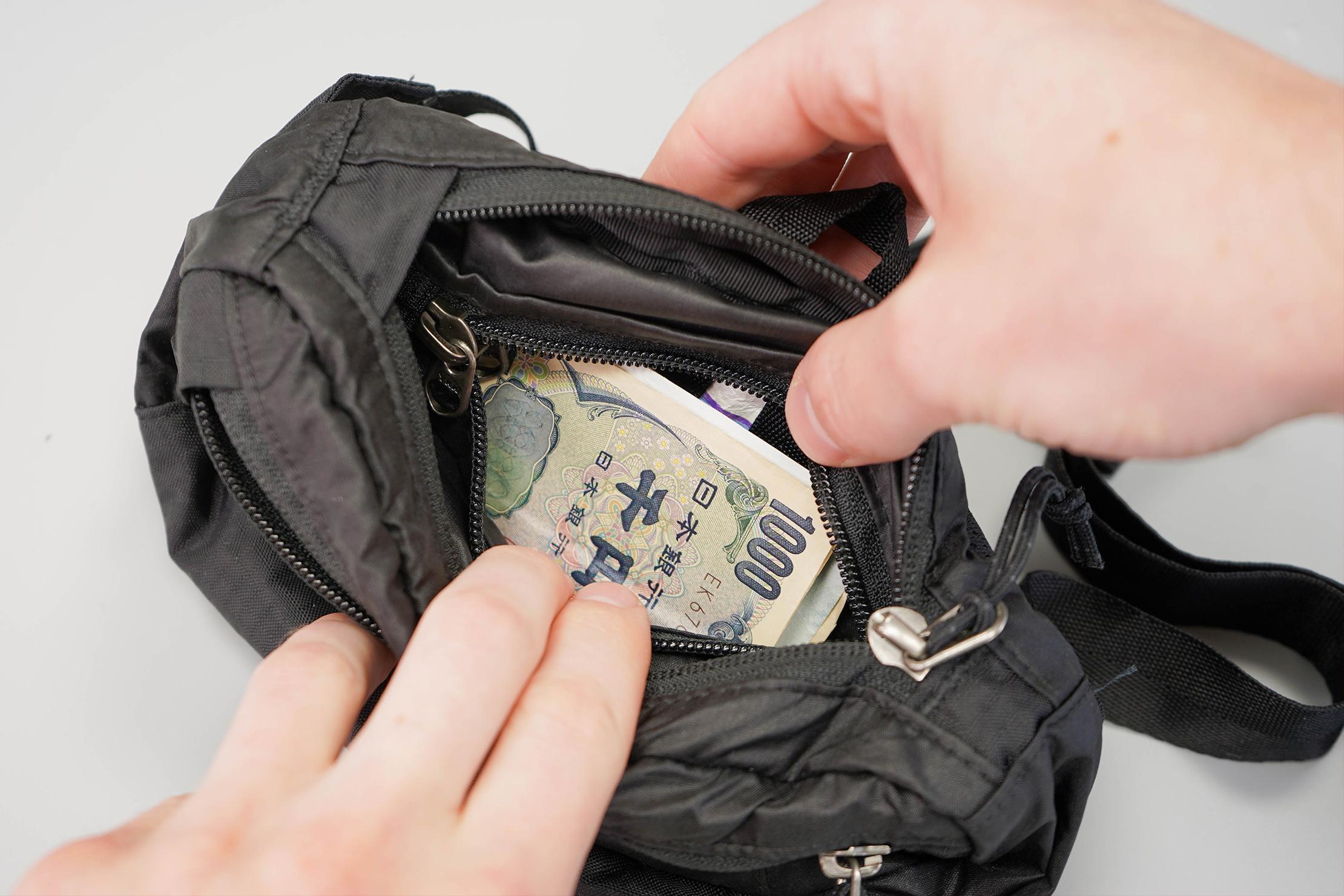 Patagonia Lightweight Travel Mini Hip Pack Secret Pocket