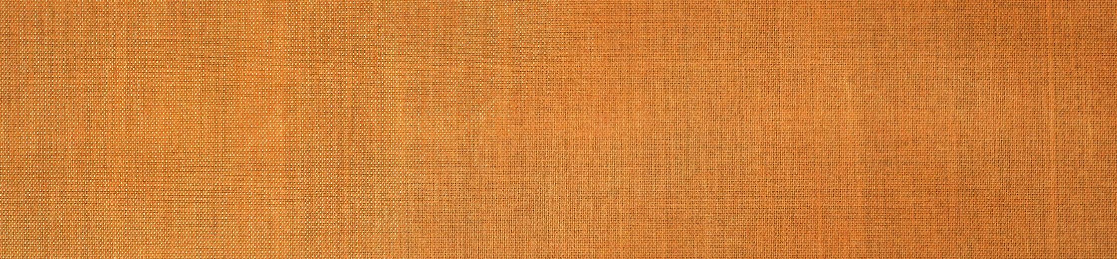 Dyneema® Composite Fabric