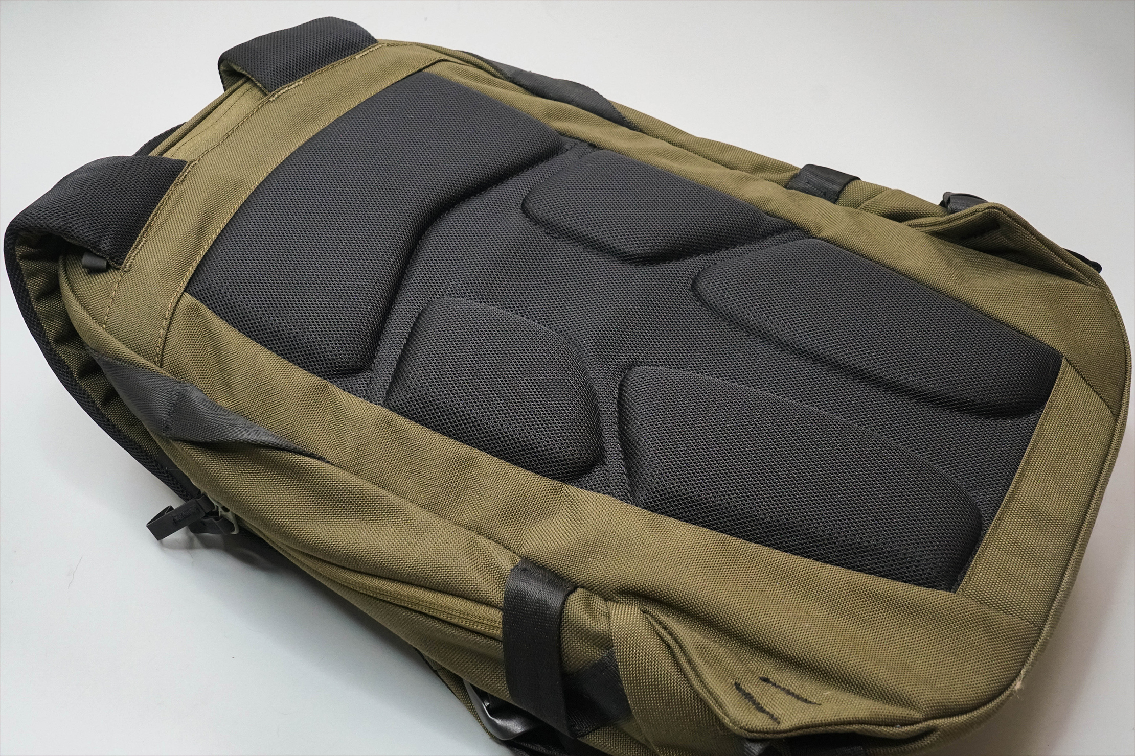 Able Carry Daily Backpack Back Panel