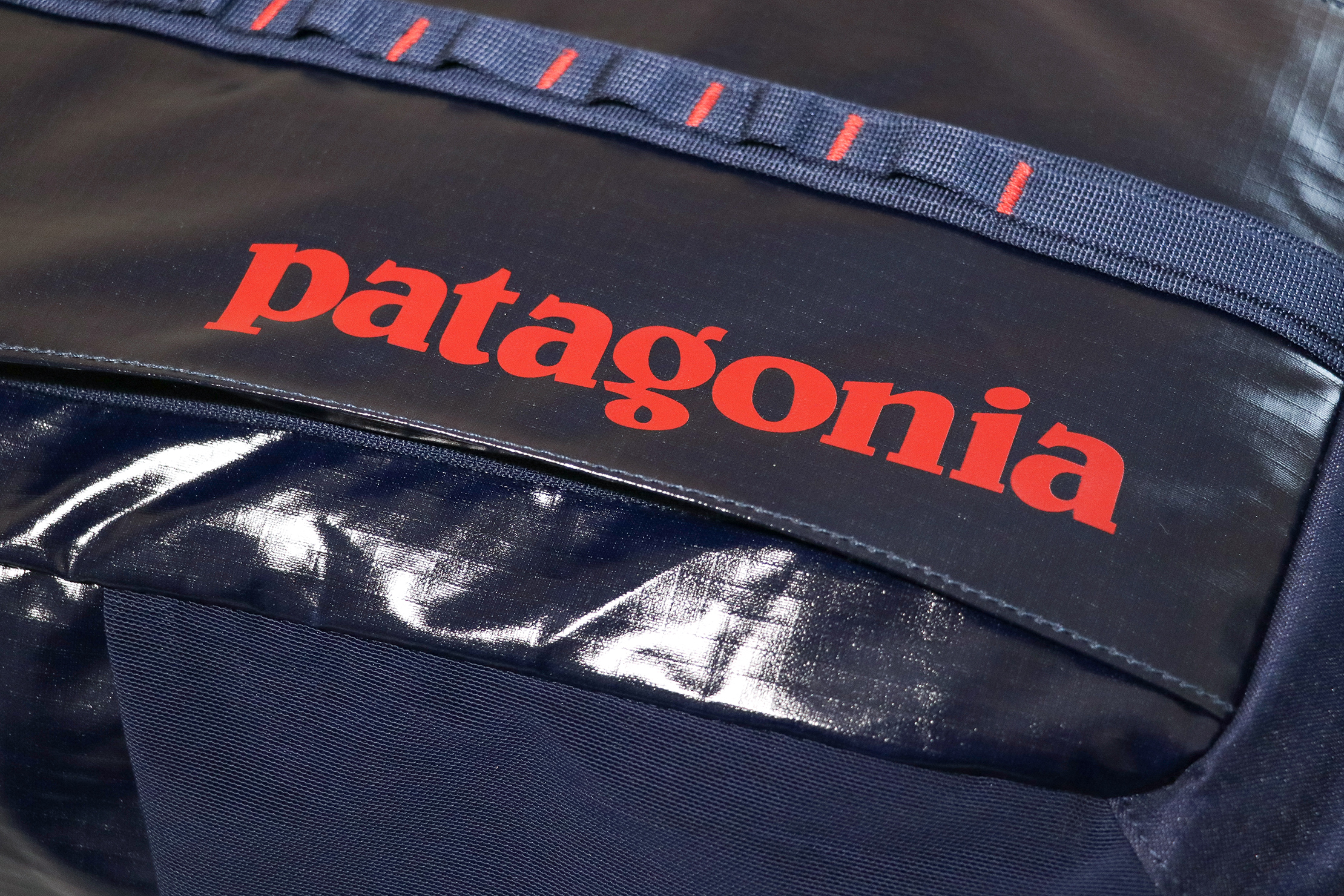 Patagonia Black Hole 25L Backpack Material and Logo