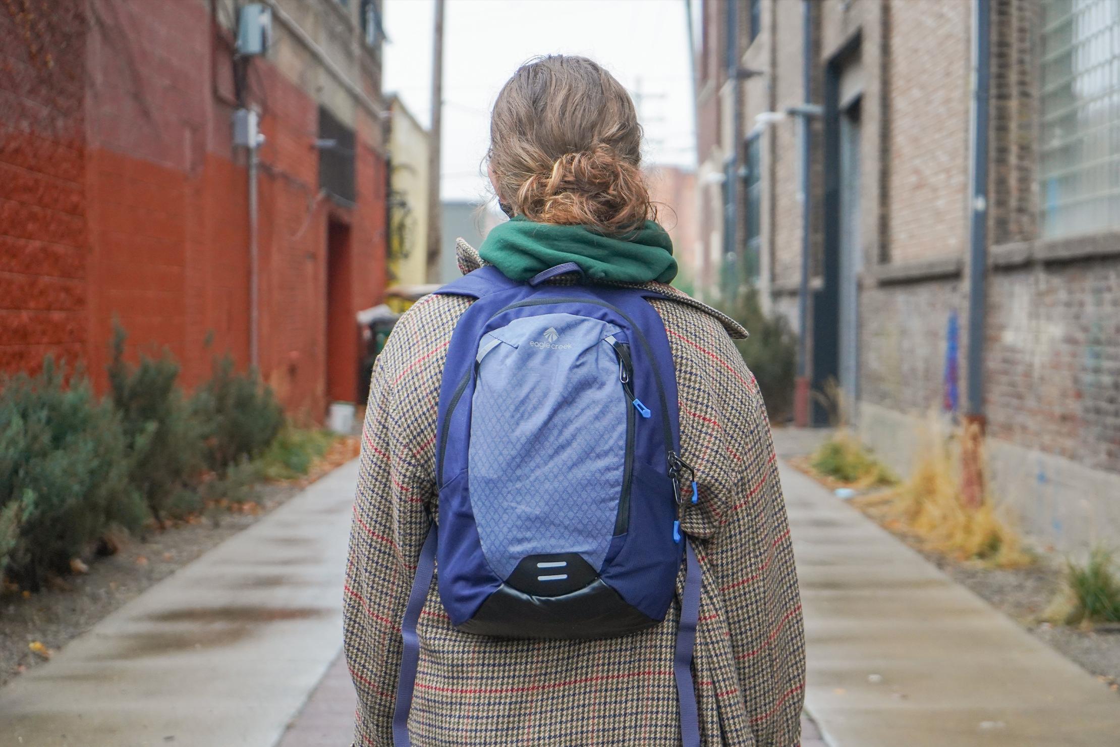 Eagle Creek Wayfinder Backpack Mini in Detroit
