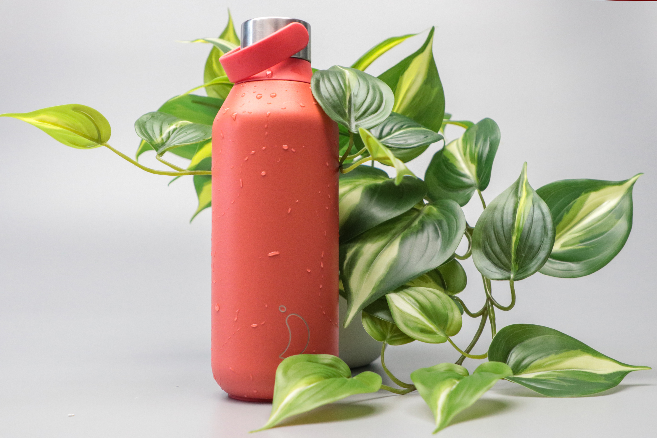 Chilly's Series 2 Water Bottle With Leaves